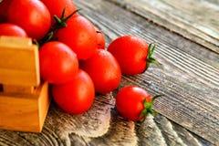Flaque mûre rouge de tomates hors de boîte Vue rustique Images stock