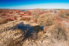 Flaques de saison de rivière au printemps Jour de source ensoleillé Beau paysage Photos stock