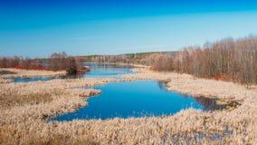 Flaques de saison de rivière au printemps Jour de source ensoleillé Beau paysage Photo libre de droits