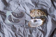 Flarden voor ogen en shells van oesters stock fotografie