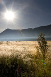 Flare upon savanna. Flare upon bromo savanna, east java, indonesia Royalty Free Stock Photography