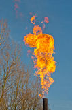 Flaring flames against a blue sky Stock Photo