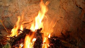 Flaring flames. Beautiful vibrant flames burn inside a fireplace filled with small branches and leaves Stock Image