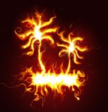 Flaring palm trees. With burning flames curling and snaking around against a black background Royalty Free Stock Images