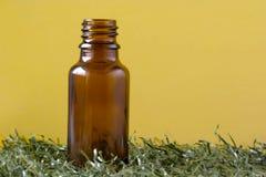 Flasche auf Gras Stockfoto