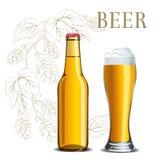 Flasche Bier und Glas auf dem Hintergrund einer Hopfenskizze stockbild
