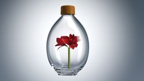 Flasche 3D Stockfoto