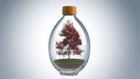 Flasche 3D Stockbilder