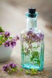 Flasche der Thymianinfusion und -mörsers Lizenzfreie Stockfotos