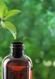 Flasche des ätherischen Öls Stockfotos