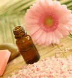 Flasche des Massageschmieröls, des Badesalzes und der Blume. lizenzfreie stockfotos