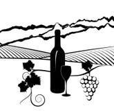 Flasche des Weins und des Weinbergs Stockbilder