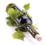 Flasche entwirrt mit Rebe Stockbild