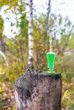 Flasche Gift, giftige Kapsel, Halloween Stockfoto