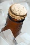 Flasche mit alkoholfreien Getränken lizenzfreies stockfoto