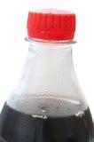 Flasche mit Kolabaum lizenzfreie stockbilder
