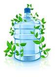 Flasche mit sauberem blauem Wasser und grünem Laub Stockbilder
