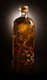 Flasche mit Schmieröl und aromatischen Kräutern Stockfotografie