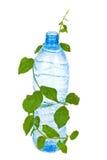 Flasche mit Wassergetränk und -laub stockbilder