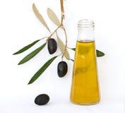 Flasche Olivenöl und Ölzweig Lizenzfreie Stockfotografie