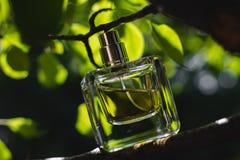 Flasche Parfüm Stockfotografie