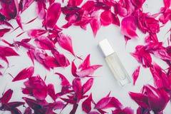 Flasche Parfüm mit den rosa Pfingstrosenblumenblättern Blumenduft Organisches Kosmetikkonzept lizenzfreie stockbilder