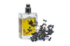 Flasche Parfüm, persönlicher Zusatz, aromatischer wohlriechender Geruch Lizenzfreie Stockfotografie