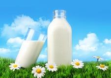 Flasche und Glas Milch mit Gras und Gänseblümchen stockfoto