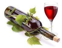 Flasche Wein in der Rebe Lizenzfreie Stockfotografie