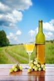 Flasche Wein- und Traubenbündel gegen schöne Landschaft Stockfotografie