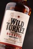 Flasche wilder gerader Bourbonwhisky der Türkei Kentucky Stockbild
