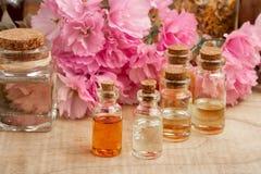 Flaschen ätherisches Öl mit rosa kwanzan Kirschblüten stockfotos