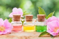 Flaschen ätherisches Öl und rosa wilde rosafarbene Blumen stockfotos