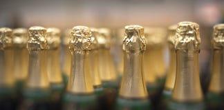 Flaschen Champagner lizenzfreie stockfotos