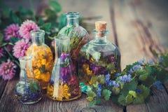Flaschen der Tinktur oder der Infusion der gesunden Kräuter, heilende Kräuter lizenzfreie stockbilder