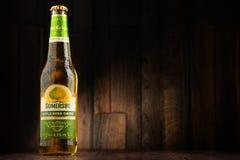Flaschen des Somersby-Apfelweingetränks Lizenzfreies Stockbild