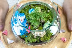 Flaschen-Gärten auf einer hölzernen Platte stockfoto