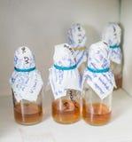 Flaschen im Labor Lizenzfreies Stockbild