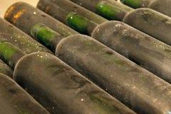 Flaschen im Weinkeller lizenzfreies stockfoto
