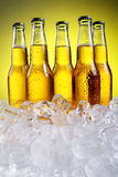 Flaschen kaltes und frisches Bier mit Eis Stockfoto