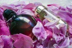 Flaschen Parfüm in den Blumenblättern lizenzfreies stockfoto