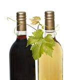 Flaschen roter und weißer Wein lizenzfreies stockbild