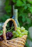 Flaschen roter und weißer Wein mit Trauben Lizenzfreie Stockbilder