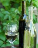 Flaschen roter und weißer Wein mit Trauben Lizenzfreie Stockfotos
