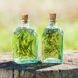 Flaschen Thymian und Rosmarinätherisches öl oder -infusion draußen lizenzfreies stockfoto