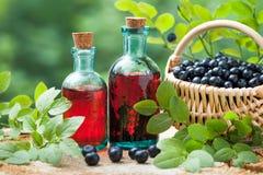 Flaschen Tinktur oder Kosmetikprodukt und -korb mit Blaubeeren lizenzfreies stockfoto