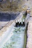 Flaschen Wein hielten kühl im Wasser Stockbilder