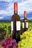 Flaschen Wein mit weißem Kennsatz Stockfoto