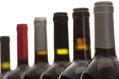 Flaschenhälse, Reihe von Weinflaschen lizenzfreies stockbild