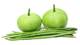 Flaschenkürbis und Moringa.oleifera lizenzfreies stockfoto